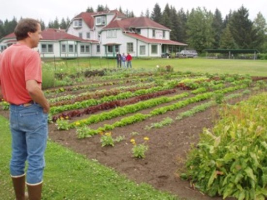 Gustavus, AK: June garden just getting started