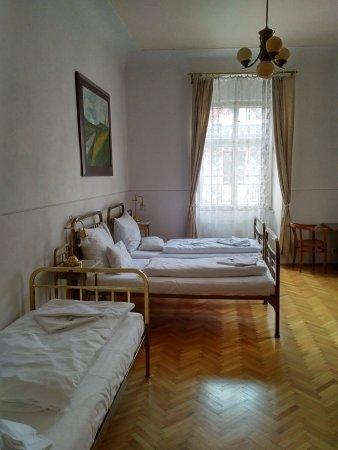 Hotel U Zlateho Jelena: Room