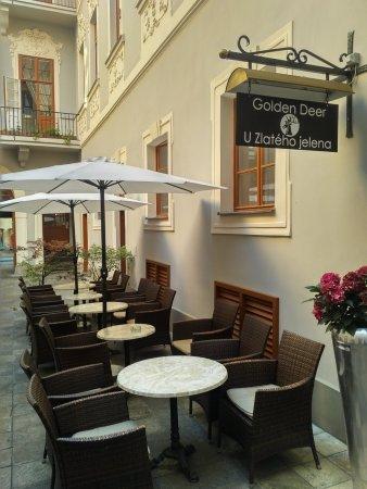 Hotel U Zlateho Jelena: Coffee bar