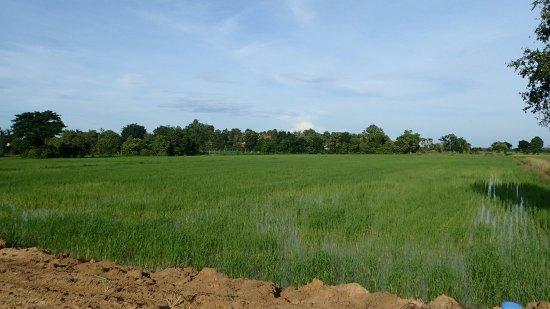 Μπαταμπάνγκ, Καμπότζη: OI000592_large.jpg