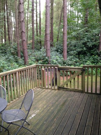 Flaxton, UK: Private decking area is very private.