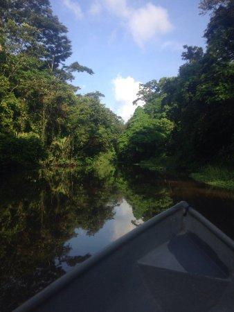 Tortuguero, Costa Rica: Canoe tour
