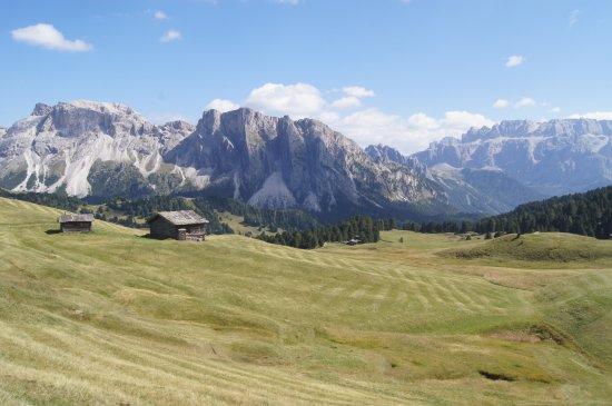 Ortisei, Italia: Veduta Alpe di Cisles