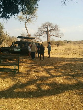 Iringa, Tanzania: Safari to Udzungwa mountains and Ruaha national parks!