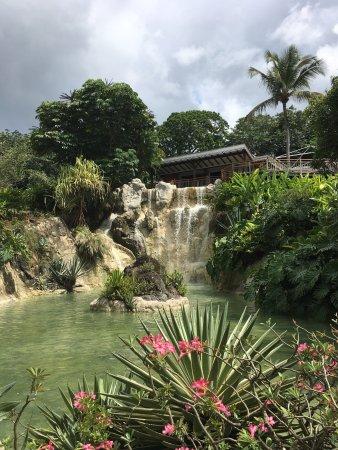 Deshaies, Guadeloupe: photo0.jpg