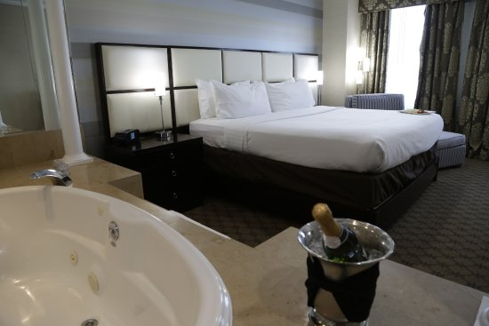 Holiday Inn Plainview Long Island Bridal Suite