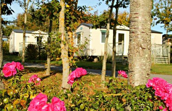 Sarzeau, France: Mobile home Ohara Eco-concus