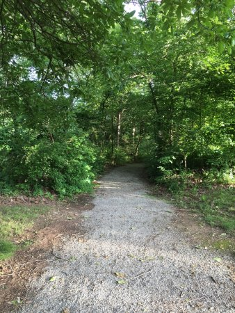 Annapolis, Μιζούρι: Hiking and Biking Trails