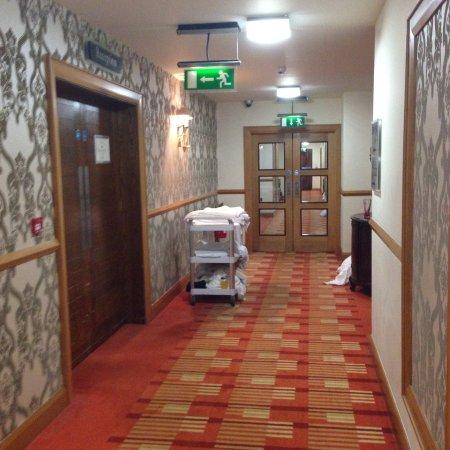 Speenoge, ไอร์แลนด์: Noisy Doors