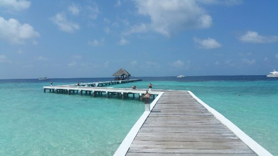 Eriyadu Island Resort: 20160927_095617_large.jpg