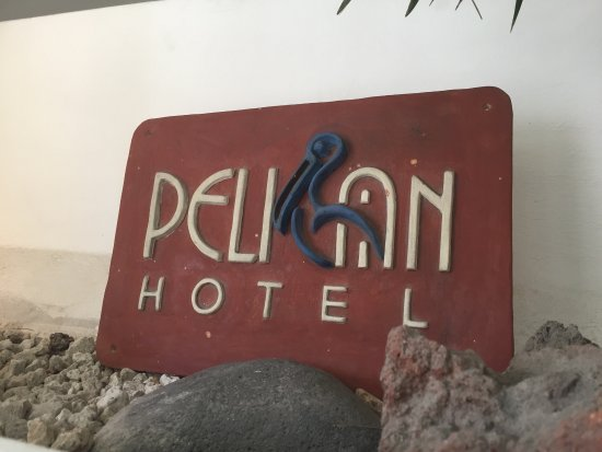 Pelican Hotel: iPhone pictures from around the hotel