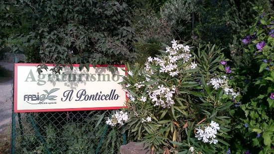 Agriturismo il Ponticello : photo0.jpg