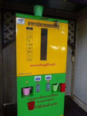 sanam chandra palace fishfood vending machine