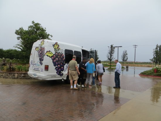 Temecula, CA: Mike drove 12 of us in the little bus and stored our wine that was purchased.