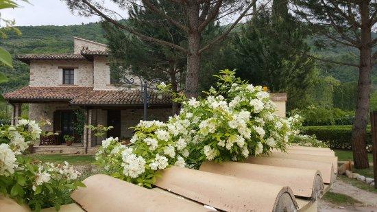 Ferentillo, Italia: I Terzierri Country House: ingresso