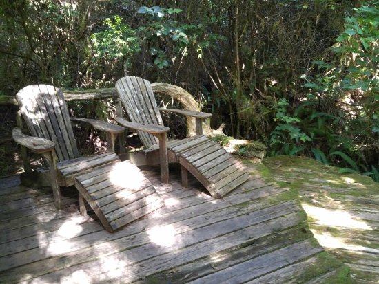 African Beach Bed and Breakfast: Little side deck with chairs - perfect for a glass of wine!