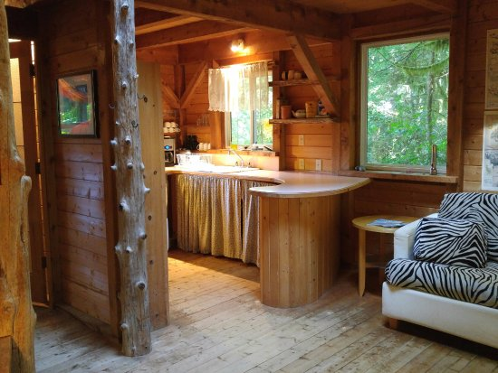 African Beach Bed and Breakfast: View from the dining table to the kitchen with the hide-a-bed.