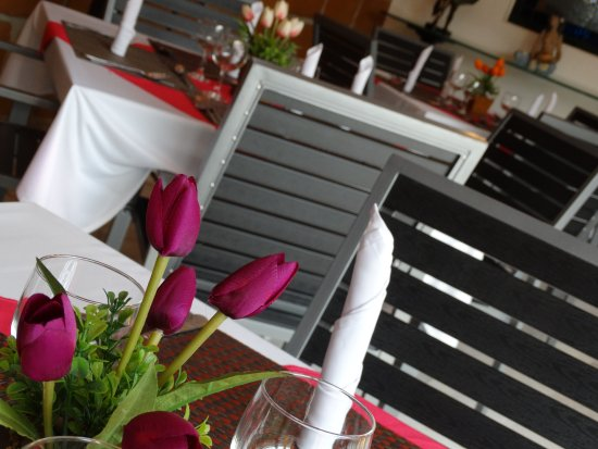 Paraiso Hotel, Garden & Spa Photo