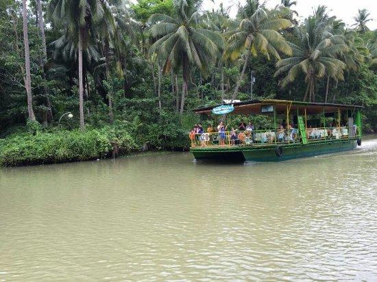 Лобок, Филиппины: 13567046_1256776660999195_755867861342066225_n_large.jpg