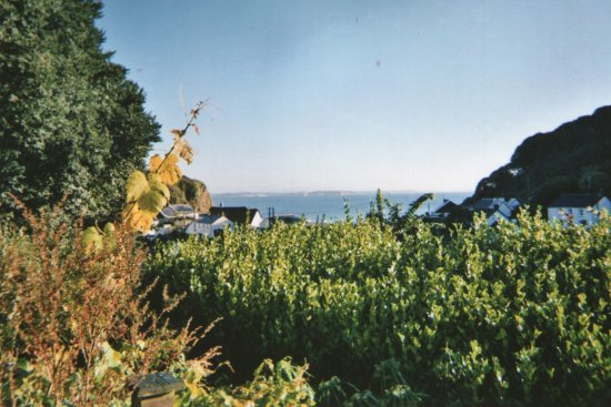 St Keverne, UK: View from dining room