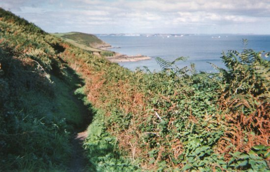 St Keverne, UK: South-west Coastal Path between Porthallow & Nare Point