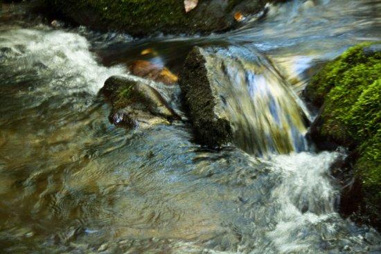 Национальный парк Грейт-Смоки-Маунтинз, Северная Каролина: A small stream near Mingus Mill