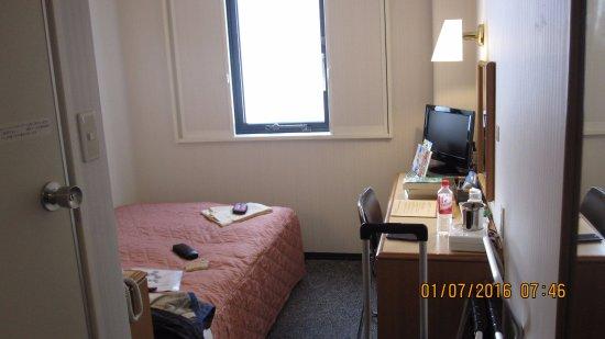 Kawasaki Green Plaza Hotel: My room, from the doorway