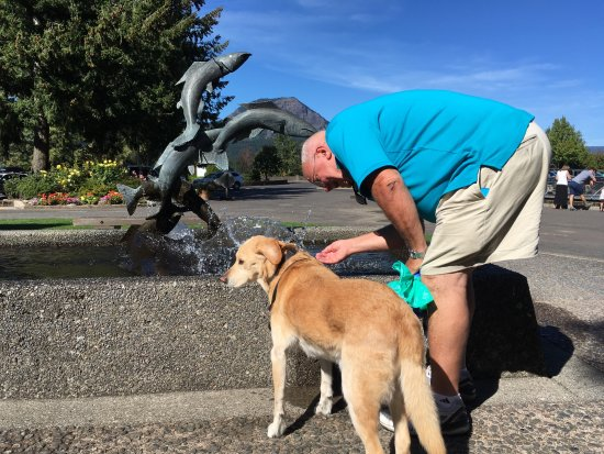 Cascade Locks, Oregón: Getting a drink at the salmon fountain