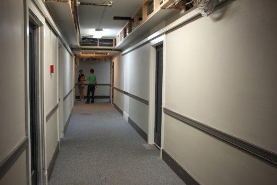 Petaluma, Kalifornia: Hallway in mid-renovation