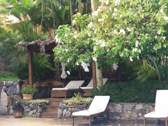 Porto Bay Buzios: Que tal relaxar aqui à beira da piscina?