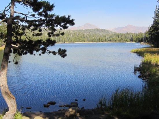 Lembert Dome: Dogbone Lake