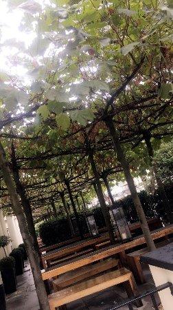 La Suite West - Hyde Park: photo1.jpg