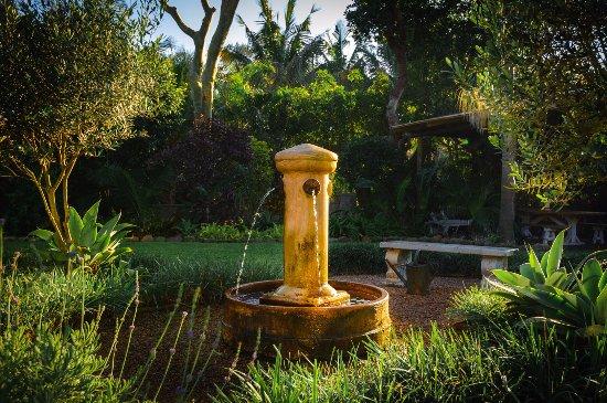 Salt Rock, Южная Африка: garden