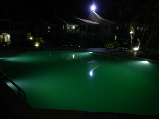 Captain Don's Habitat: Green water pool