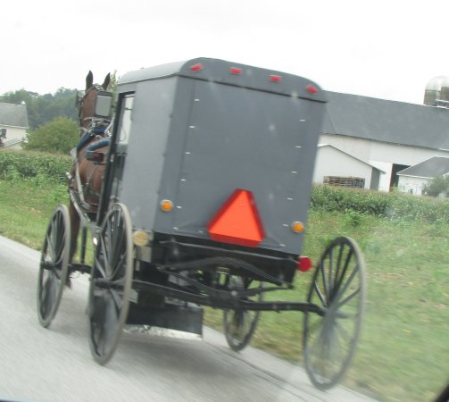 Honey Brook, Pennsylvanie : Many horse and buggies in the area