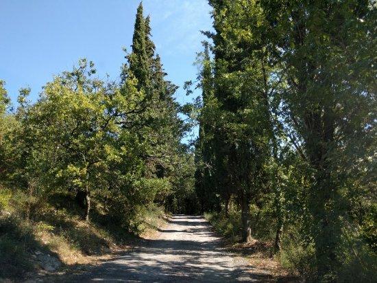 Bagno a Ripoli, Italia: IMG_20160923_131327_large.jpg