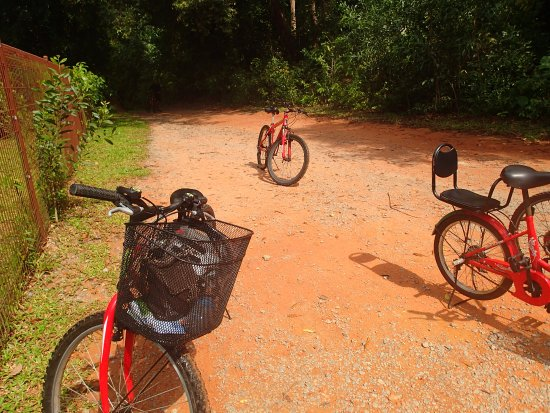 Pulau Ubin, Singapore: Our Bikes
