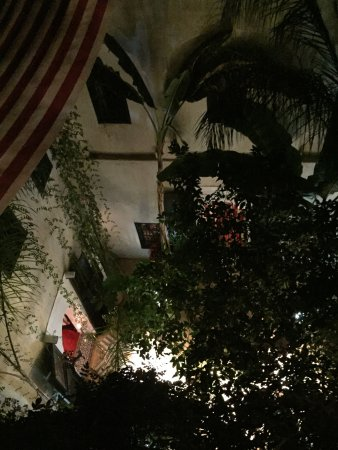 Riad Tibibt: photo0.jpg