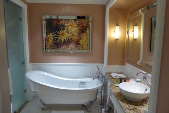 Summerstrand, Sudáfrica: Lovely elegant well run hotel.