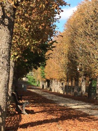 Saint-Cloud, Francia: photo3.jpg