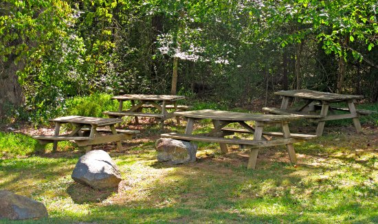 Allen & Son Pittsboro, NC Shaded Outdoor Dining Area