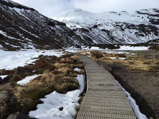Tongariro National Park, Nowa Zelandia: Along soda spring
