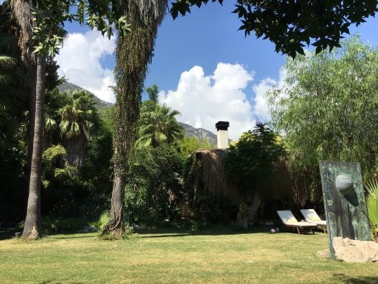 Olympos Lodge: Tatil dinlence budur işte