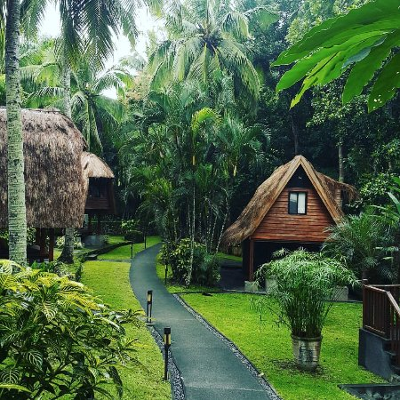 The Farm at San Benito: look at the lush rainforest surrounding