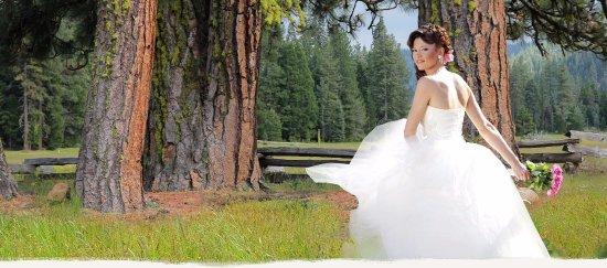 Mill Creek, Kalifornien: We do weddings!