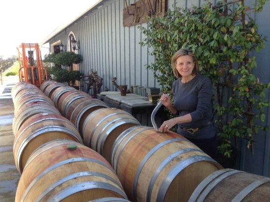 Lodi, CA: Wine Making !