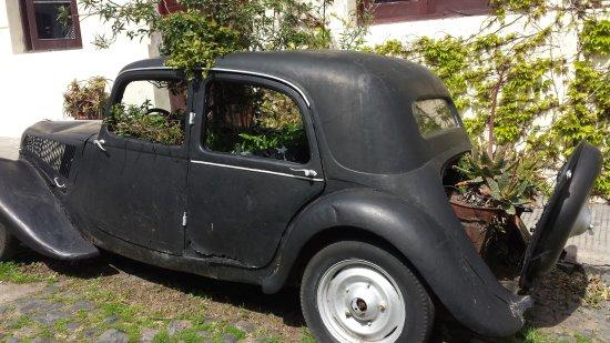 Faro di Colonia del Sacramento: auto antiguo convertido en maceta
