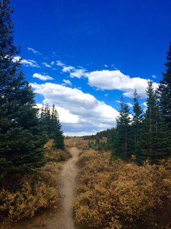 Ward, CO: One of the many hiking trails around the lake