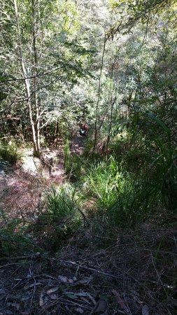 Gosford, Australien: 20160928_105053_large.jpg
