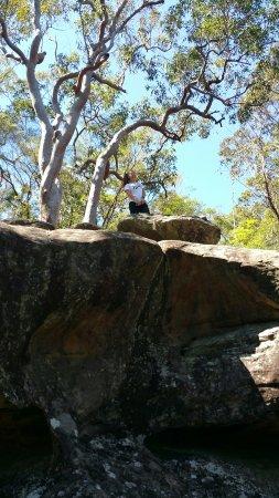 Gosford, Australien: 20160928_104611_large.jpg